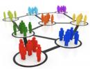 estructura y organizacion pequeño